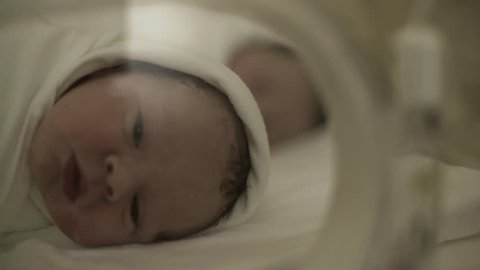 Portrait of beautiful premature newborn baby while yawning and looking around during treatment in incubator in intensive care unit at maternity ward.Dolly shot. Rack focus.