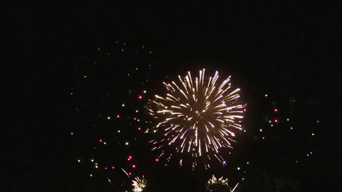 Colourful fireworks above night sky