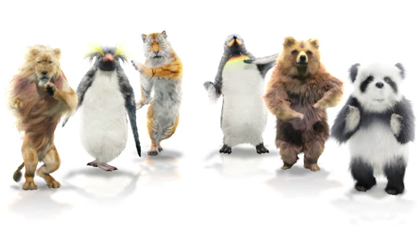 Panda tiger penguin penguins White lion bear CG fur 3d rendering animal realistic CGI VFX Animation  Loop Alpha channel dance composition 3d mapping cartoon | Shutterstock HD Video #1025286968