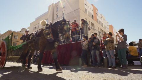 Reus, Spain. March 2018: Horses, donkeys and mules pulling coaches in The Tres Tombs festival cavalcade. The Blessing of farm animals and even pets on the Day of Saint Anthony, patron saint of animals