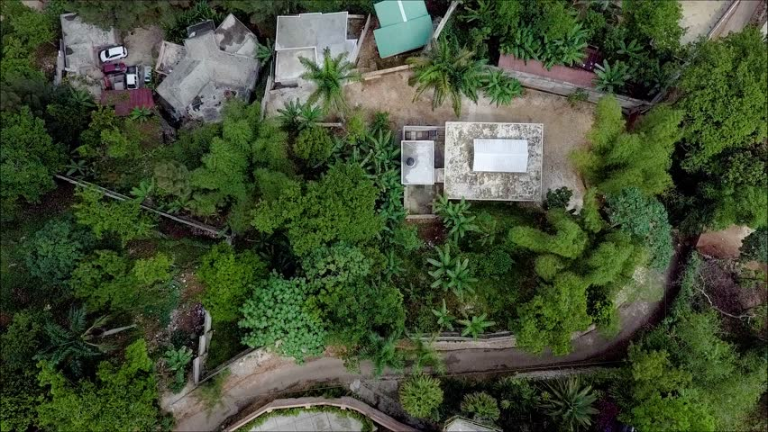Drone shot over some existing tropical trees revealing a small jungle village in Haiti.