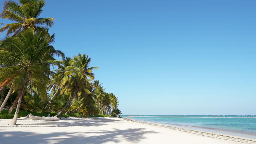 Amazing beach with palms Maldives, white sand and blue turquoise sea water. Summer noon / Island trip on idyllic resort vacation. Travel ocean beach. Coastline bounty island beach with coconut palms