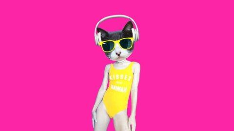 Motion minimal gif design. Pretty dancing Dj kitty. Beach party vibes