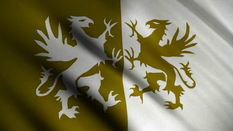 Image of yellow and white gryphons on a yellow and white background on the flag. Attributes of power