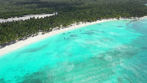 Aerial view from drone on tropical island with coconut palm trees and turquoise caribbean sea. Dominican Republic