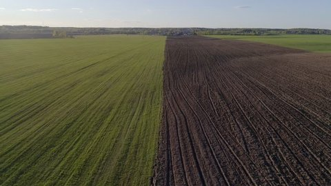 Aerial photography: countryside, green meadow and plowed black field, black soil, the camera flies along the border of the field and the earth, at sunset in spring/summer