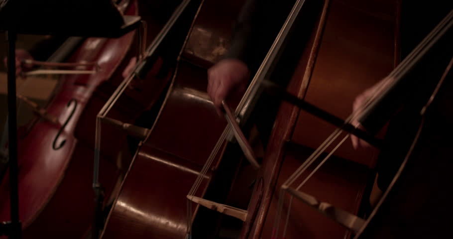 Stock video classical music Symphony orchestra | Shutterstock HD Video #1028441498