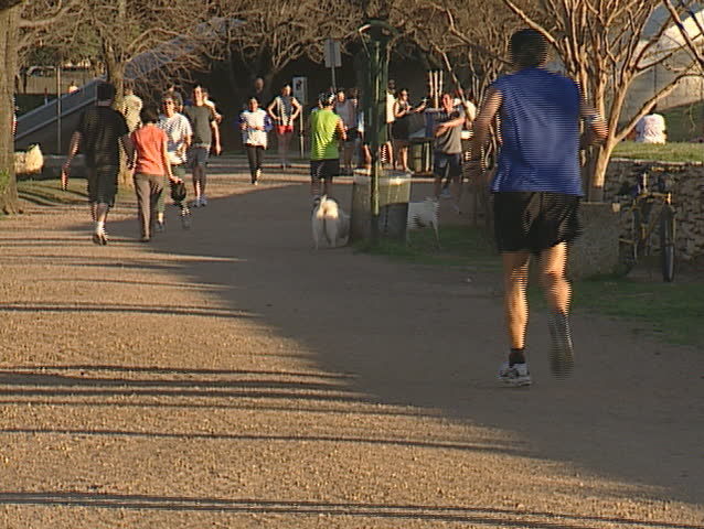 runners on jogging trail