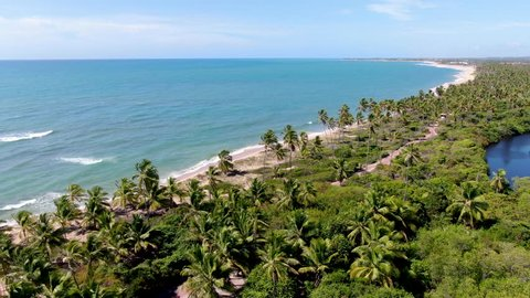 Aerial view of tropical white sand beach and turquoise clear sea water with small waves and palm trees forest. Praia do Forte, Bahia, Brazil. Travel tropical concept