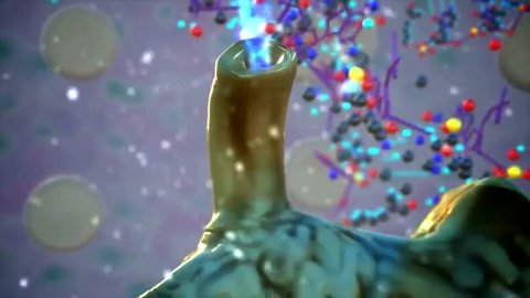 3D Animated Bacteriopage Lytic Cycle, a virus that specifically infects bacteria