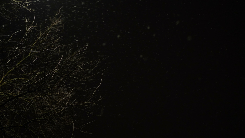 Falling snow at night. Video footage of falling snow at night. | Shutterstock HD Video #1029841418
