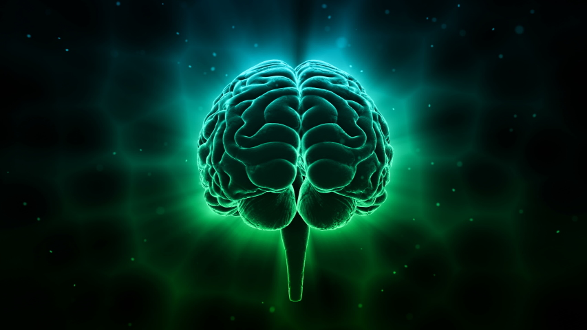 Brain head mind image background. | Shutterstock HD Video #1030199588