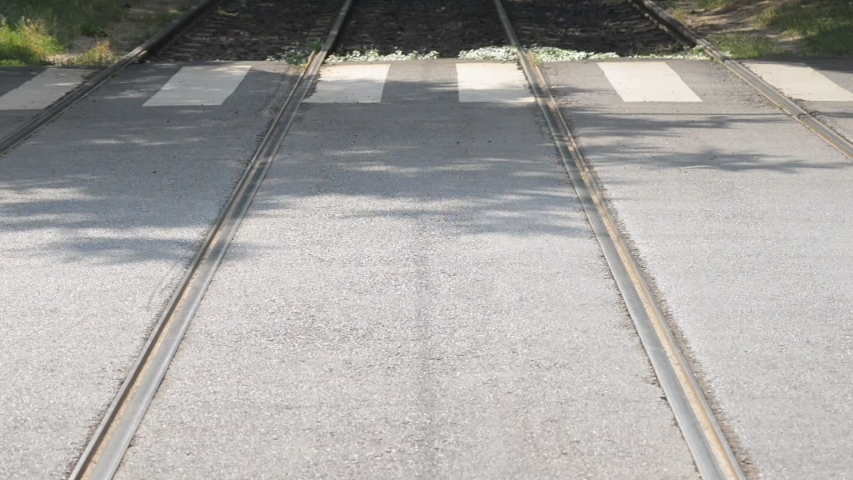 Zebra crossing between tram rails   Shutterstock HD Video #1032052718