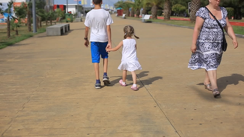 Sister holding the hand of his older brother, the children walk by the sea on a Sunny day, a happy childhood.   Shutterstock HD Video #1032126008