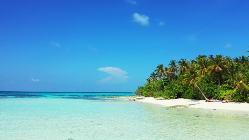 Aerial view of a low flight above shallow water in front of a tropical island with palm trees on it. In Jamaica. Dolly out. | Shutterstock HD Video #1032148778