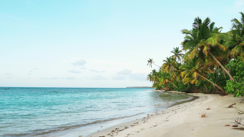Sunset on sea shore. Wild beach with coconut palm trees video 4K. Beautiful sea and sky background. Sunset on amazing sea. Clean shore and sea. Best islands in the world. Nature sunset landscape | Shutterstock HD Video #1032643598