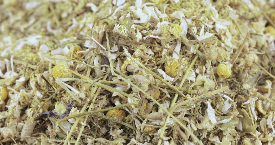 Bulk crushed chamomile apothecary with flowers and stems | Shutterstock HD Video #1032805178