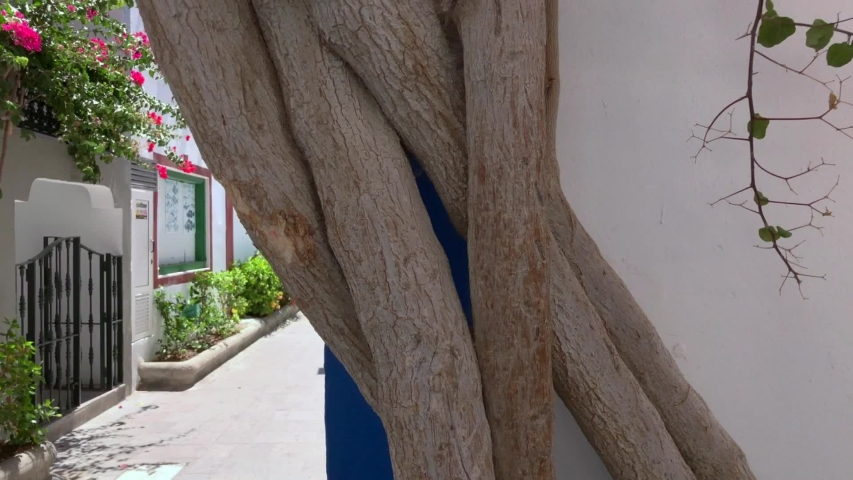 Walking through the streets of Puerto De Mogan, Gran Canaria   Shutterstock HD Video #1033475588