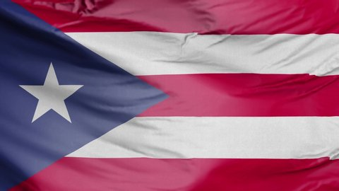 Realistic Flag of Puerto Rico
