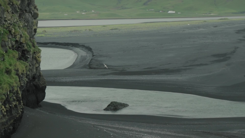A seagull flies over a black sand beach (Reynisfjara) in Iceland. Slow motion. Color graded. | Shutterstock HD Video #1034301908