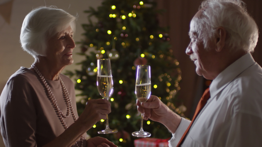 Handheld medium shot of elderly man with mustache saying toast and clinking glasses with happy senior woman while celebrating Christmas Eve together | Shutterstock HD Video #1034759768