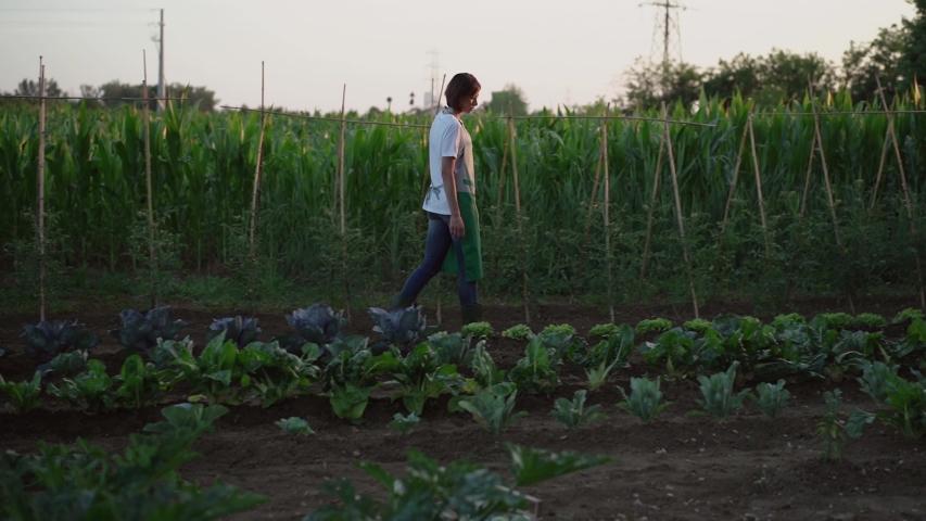 Woman working in the vegetable garden | Shutterstock HD Video #1035200948