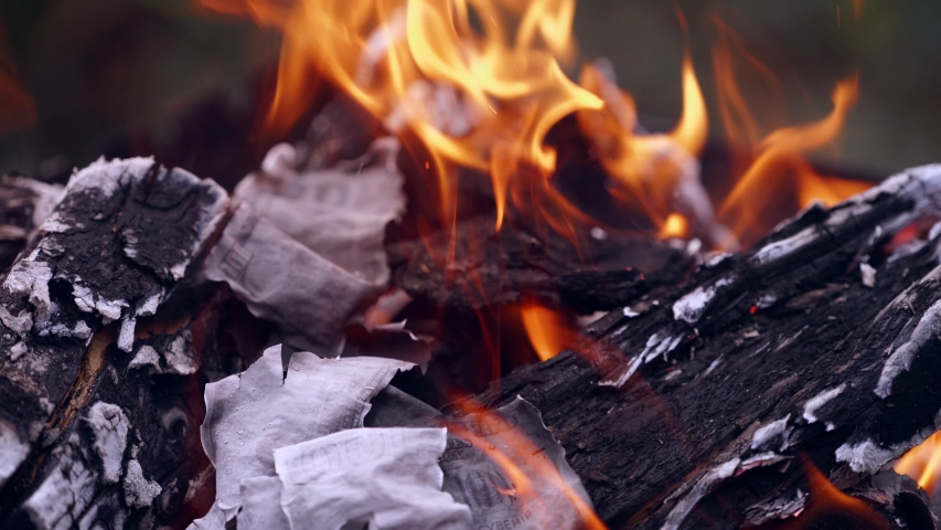 Dropping money in bonfire. Close up view of burning banknotes of money in a fireplace | Shutterstock HD Video #1035341108