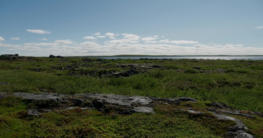 Pan shot of tundra in Northern Canada in late summer.   Shutterstock HD Video #1035631898