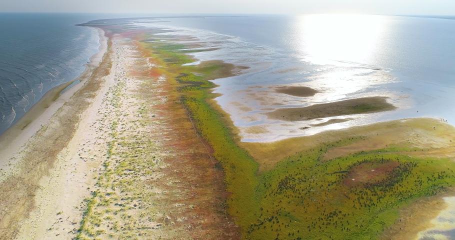 Aerial view of Sacalin peninsula in Danube delta, Romania | Shutterstock HD Video #1036408538