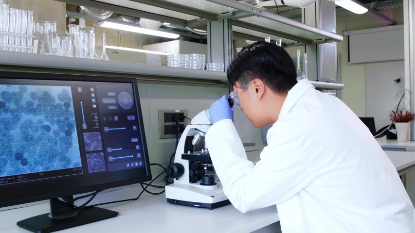Asian scientist working in lab. Doctor making microbiology research. Laboratory tools: microscope, test tubes, equipment. Biotechnology, chemistry, bacteriology, virology. | Shutterstock HD Video #1036967528