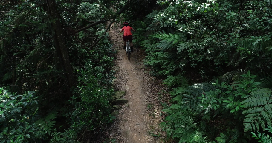 Woman cyclist cross country biking in tropical forest | Shutterstock HD Video #1037225708
