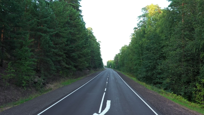 Aerial view from drone on asphalt road through pine forest | Shutterstock HD Video #1037327318