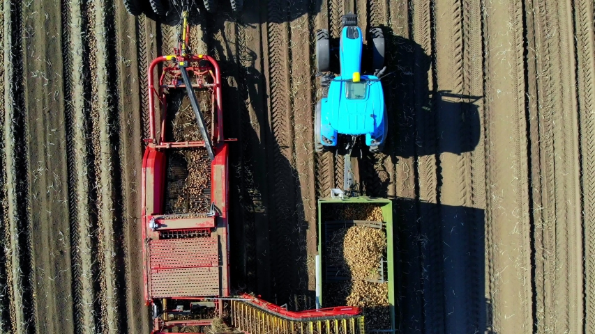 Top view, aero. Useing machinery at farm field during potatoe harvesting . Potatoe picking machine digs and picks potatoes, unloading crop into back of truck. warm autumn day | Shutterstock HD Video #1038773708