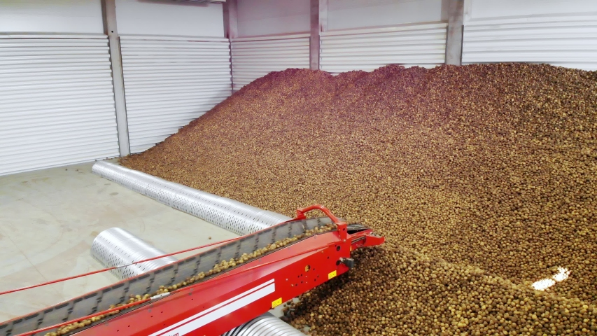 Potatoes move on special conveyor machinery belt and fit into a storage room, a warehouse for winter storage. potato harvesting, crop | Shutterstock HD Video #1038773888