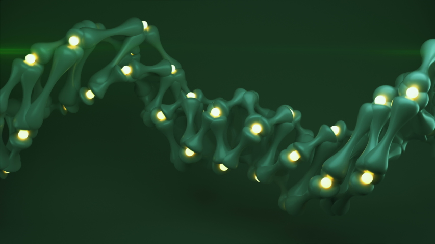 Green helix wireframe shape. Abstract 3D render seamless loop animation | Shutterstock HD Video #1039418258