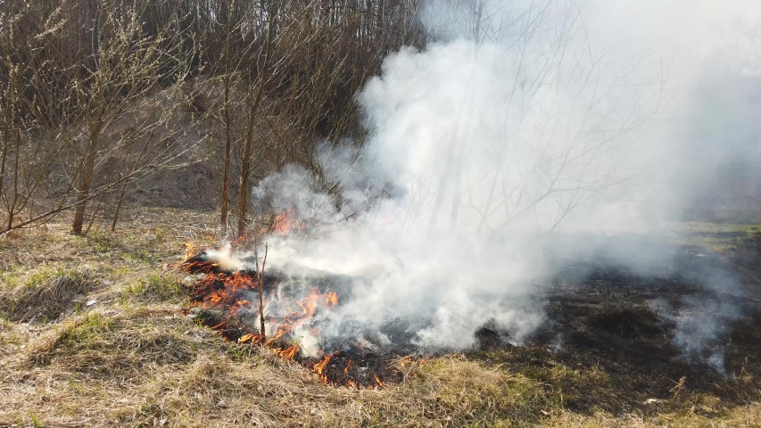 Fire in field. Burning dry grass after winter, natural disaster   Shutterstock HD Video #1041458848