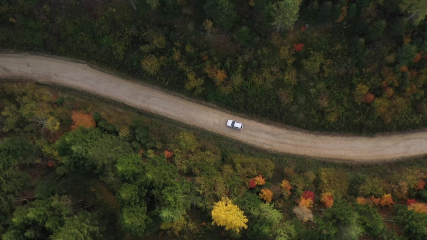 Autumn Carpathian wild forest is amazing place to travel. Aerial view. Autumn forest. Car driving trough the wild forest.   Shutterstock HD Video #1041459268