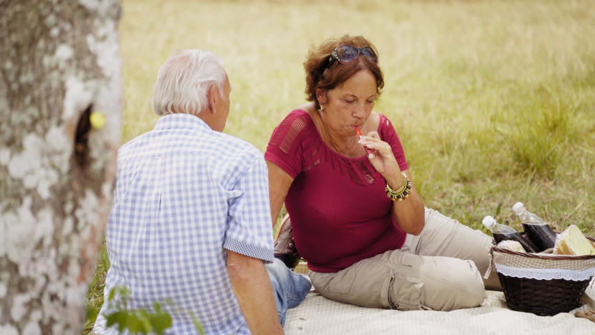 Old people, senior couple, elderly man and woman, husband and wife in park, active seniors, retirement age. Outdoors activity, leisure, recreation. Lady smoking electronic cigarette and talking  | Shutterstock HD Video #1042616848