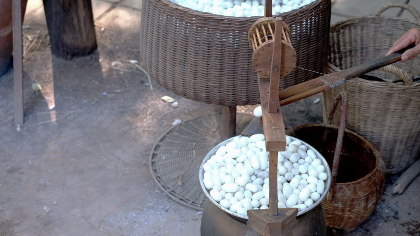 Close up of woman pulling silk form silkworm cocoons | Shutterstock HD Video #1042747168