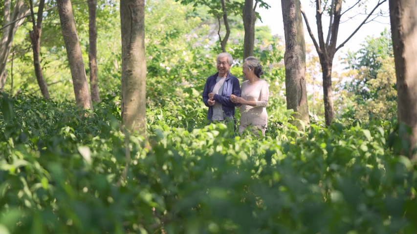 Asian old couple walking chatting outdoors in the woods   Shutterstock HD Video #1044871678