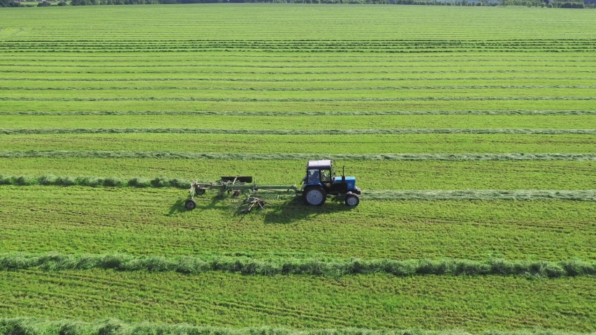 A farm tractor with a reel trailer turns freshly cut grass or hay for drying in a rural field under the sun on a summer day. Stages of harvesting hay for animal feed. Aerial view, drone follow tractor   Shutterstock HD Video #1045417708