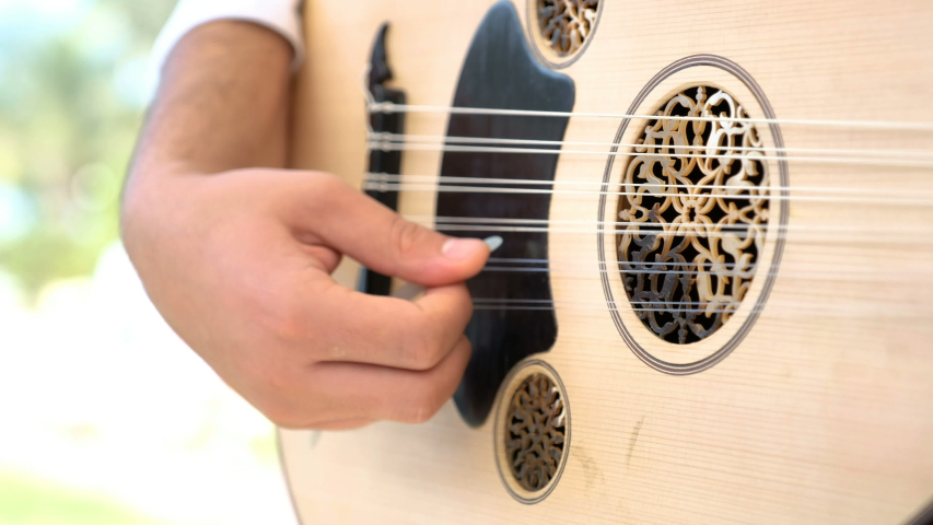Man play Turkish and Arabic instrument ud or oud. 4k Video. | Shutterstock HD Video #1046979028