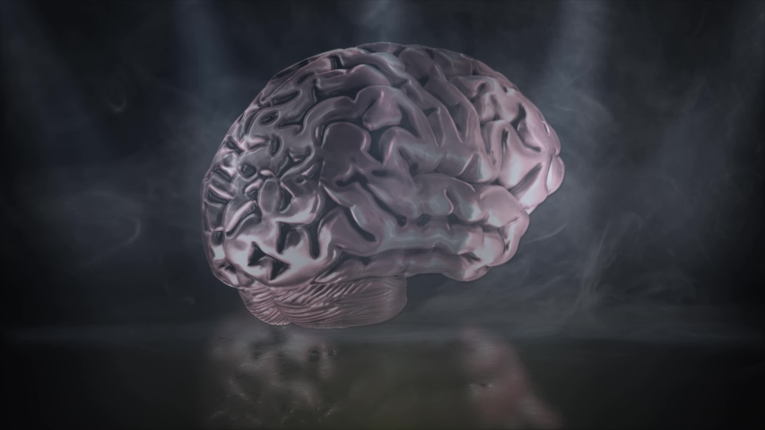 Human brain 4K animation On Black Background with lights and smoke - The human body - Mind thinking Brain Pink Color Smart Inside Skull 3D Animation human anatomy treatment brain functions    Shutterstock HD Video #1049537278