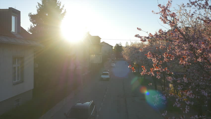 AERIAL: Sunrise sun shining over the roofs in blooming suburbia | Shutterstock HD Video #10708784