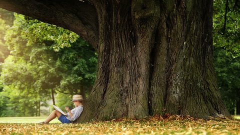 Little boy reading at book sitting a the foot of a big linden tree