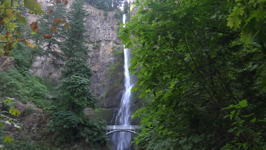 Multnomah Falls, Oregon from a distance with green trees.