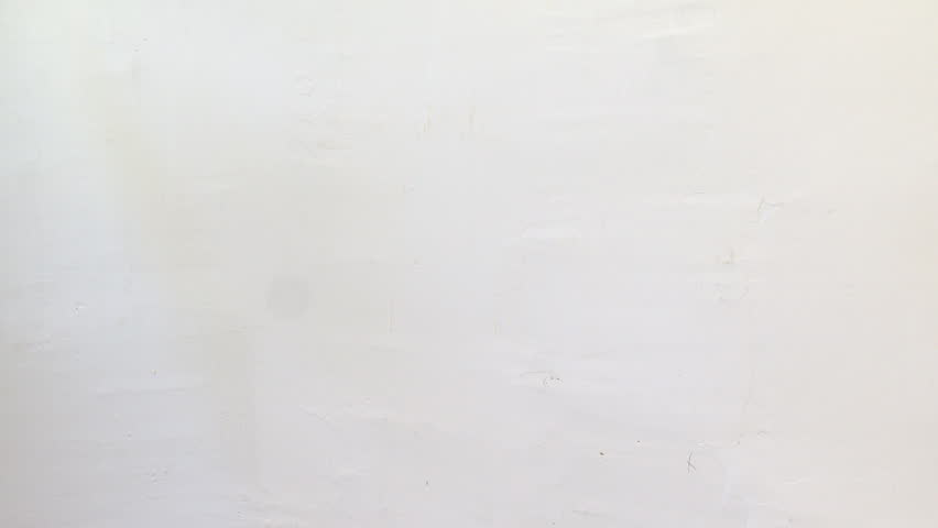 Woman painting a white wall with a light gray color stock footage time lapse of woman painting a wall in light gray color hd stock video clip mozeypictures Images