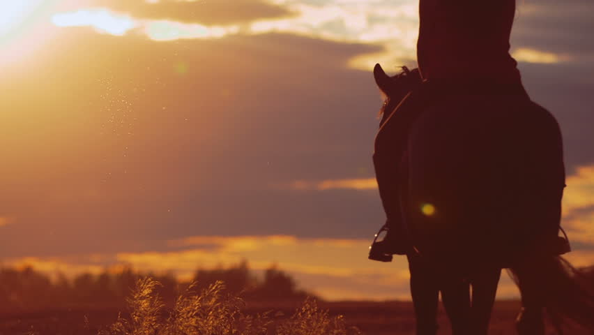 Beautiful girl riding a horse in countryside #11048651