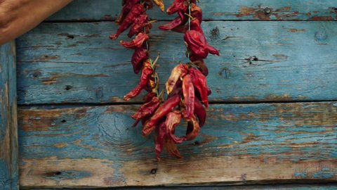 Woman hangs dried red pepper on a wooden wall