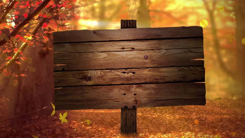 Stock Video Of Fall Background With Autumn Colors Light